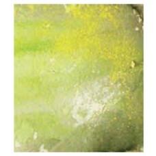 WEATHERING EFFECTS -  SLIMY GRIME LIGHT 40ml VALLEJO